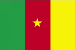 Image of the Flag of Cameroon