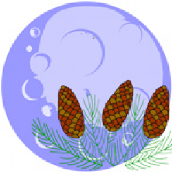 Seed Moon Sign