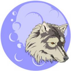 Wolf Native American Symbol