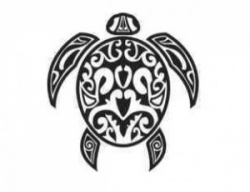 Image of the Turtle Symbol