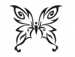 Native on Native American Symbols