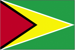 Image of the Flag of Guyana