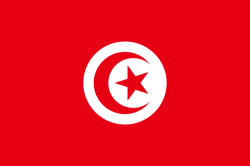 Image of the Flag of Tunisia
