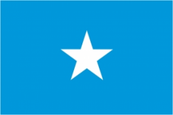 Image of the Flag of Somalia