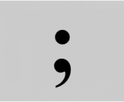 Image of the Semicolon