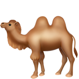 Two-Hump Camel (Apple iOS 12.2)
