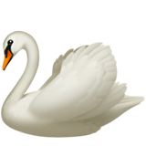 Swan (Apple iOS 12.2)