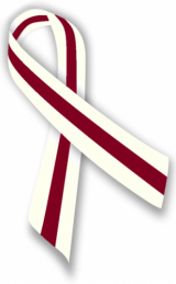 burgundy and ivory ribbon