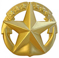 Command at Sea Insignia