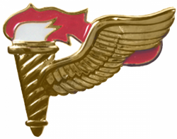 Pathfinder Badge