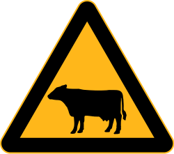 Farm Animals Crossing