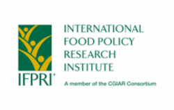 International Food Policy Research Institute