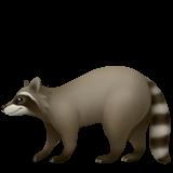 Raccoon (Apple iOS 12.2)