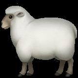 Ewe (Apple iOS 12.2)