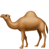 Camel (Apple iOS 12.2)