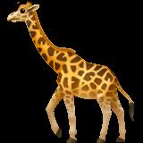 Giraffe (Apple iOS 12.2)