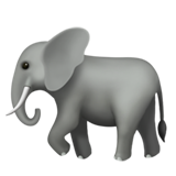 Elephant (Apple iOS 12.2)