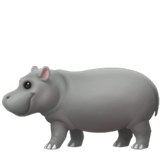 Hippopotamus (Apple iOS 12.2)