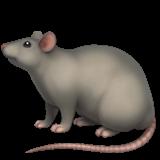 Rat (Apple iOS 12.2)