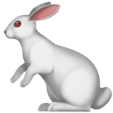 Rabbit (Apple iOS 12.2)