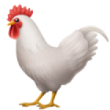 Rooster (Apple iOS 12.2)