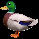 Duck (Apple iOS 12.2)
