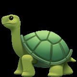 Turtle (Apple iOS 12.2)