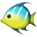 Tropical Fish (Apple iOS 12.2)