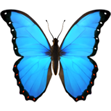 Butterfly (Apple iOS 12.2)