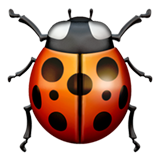 Lady Beetle (Apple iOS 12.2)