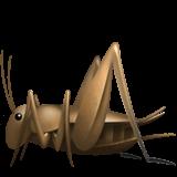 Cricket (Apple iOS 12.2)