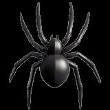 Spider (Apple iOS 12.2)