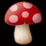 Mushroom (Samsung One UI 1.5)