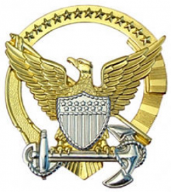 Command Afloat Badge