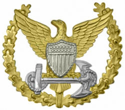 Coast Guard Command Ashore Insignia