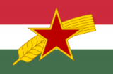 Hungarian Socialist Workers Party
