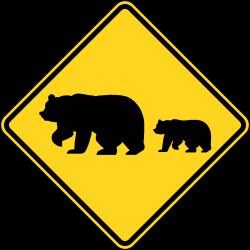Migrating Bears