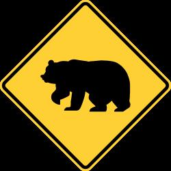 Bear Zone