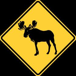Moose Area